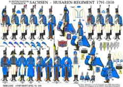 350: Electorate / Kingdom of Saxony: Hussar Regiment 1791-1810